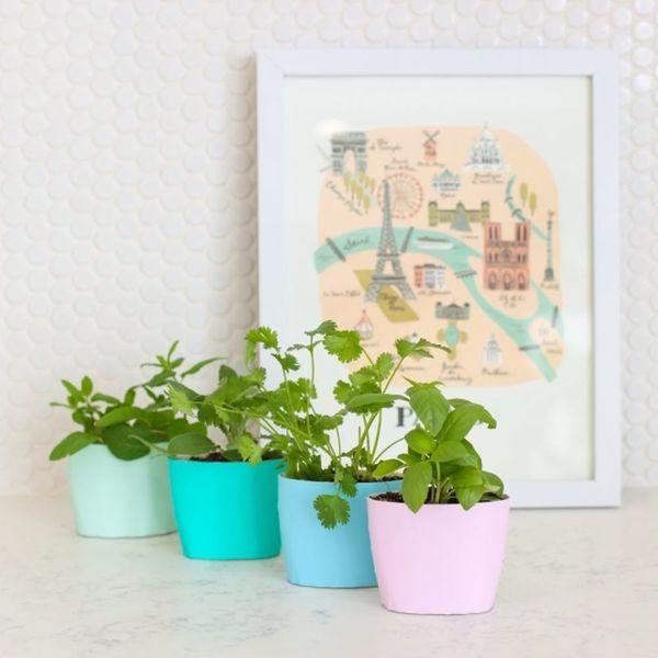 25 Ways to Start an Indoor Herb Garden