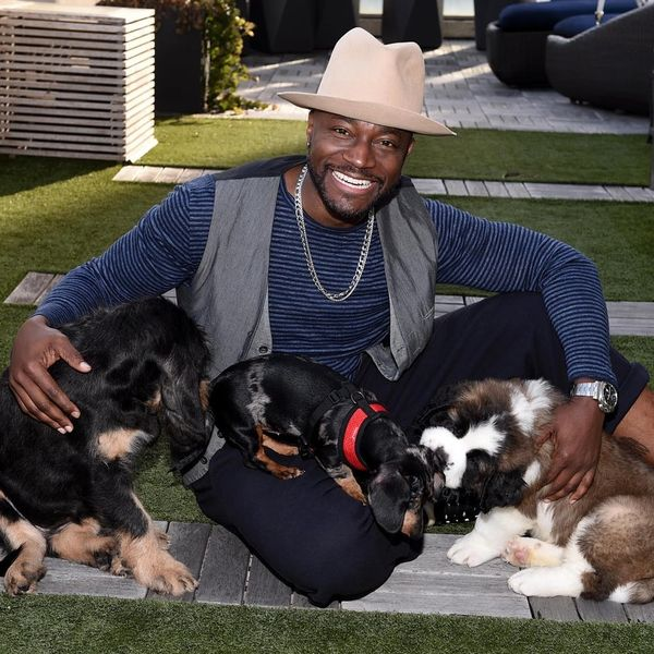 Watch Taye Diggs Play Puppy Matchmaker for Your Favorite Celebs