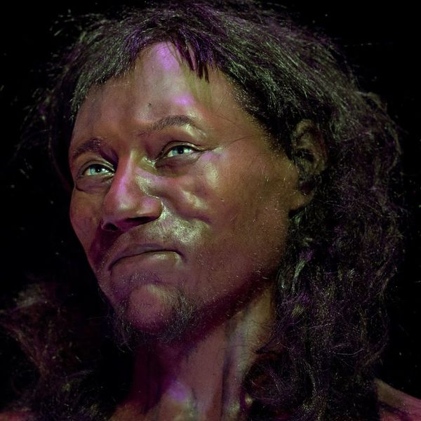 "DNA Analysis of ""Cheddar Man"" Reveals Early Britons Had Dark Skin"