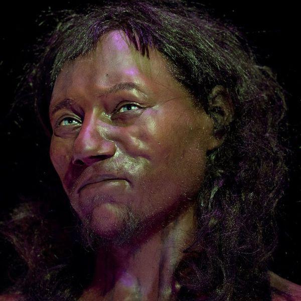 "DNA Analysis of ""Cheddar Man"" Reveals Early Britons Had Dark Skin"