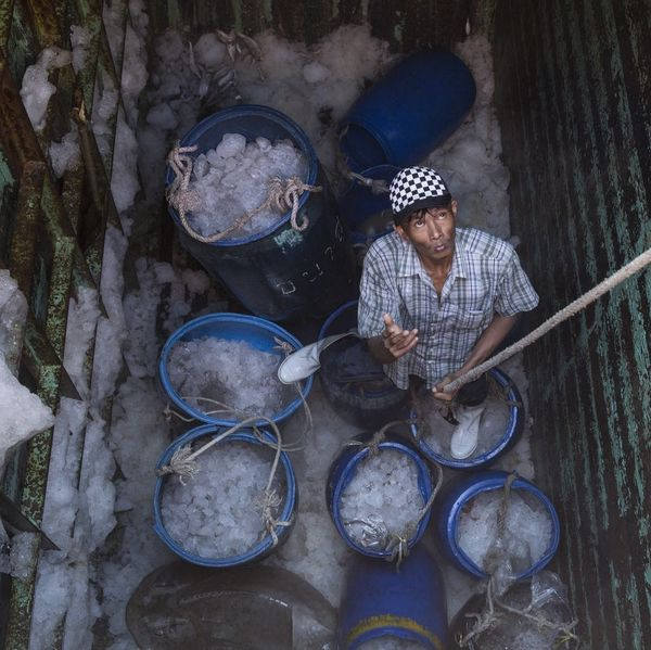 This New Database Shows if Your Seafood Was Caught Using Slave Labor