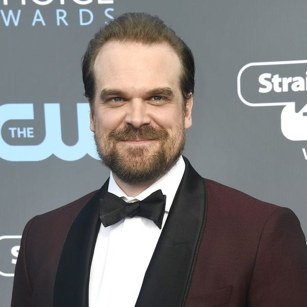 'Stranger Things' Star David Harbour Will Officiate a Fan's Wedding, Thanks to Twitter