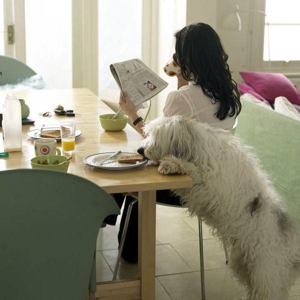 Joseph Gordon-Levitt Wants to Share Your Best Morning Routines