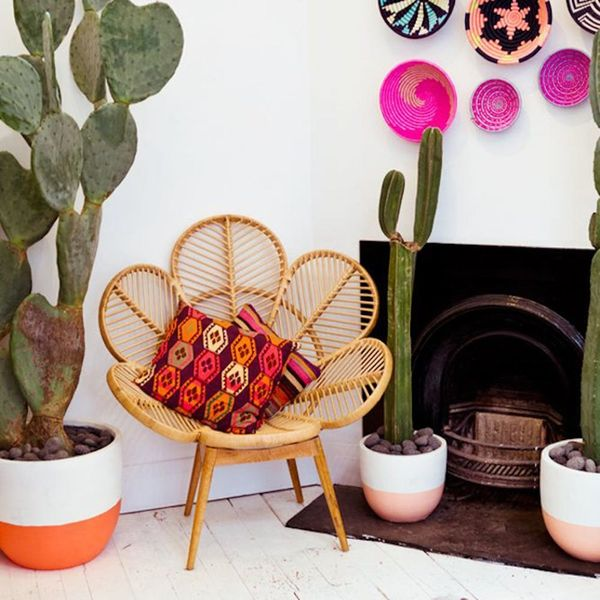 13 Rooms That Flawlessly Work the Rattan Trend