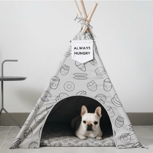 10 Must-Have Puppy Essentials for Your Apartment