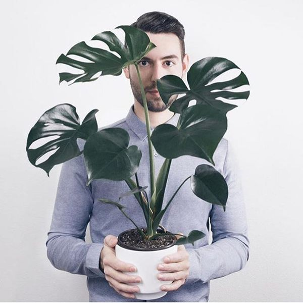 Boys With Plants Is Our New Favorite Instagram Account