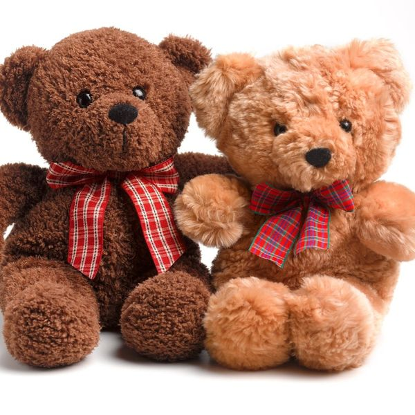 Two Little Girls Get Teddy Bears With Their Late Grandpa's Voice