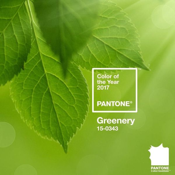 Pantone's 2017 Color of the Year Will Fill Your Life With Greenery