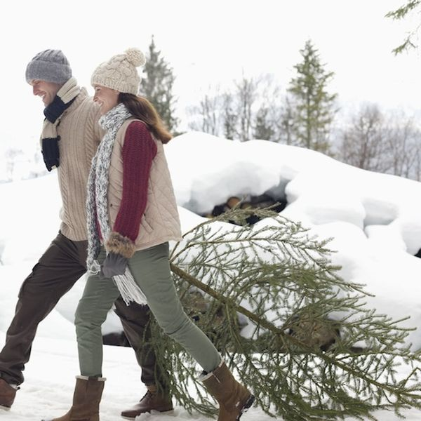 6 Holiday Hacks for Keeping Your Christmas Tree Healthy
