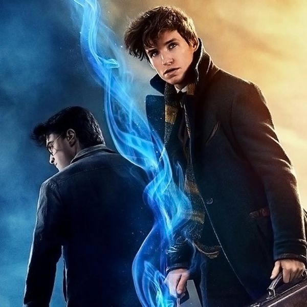 This Super Cool Deet Proves Newt Scamander Was at Hogwarts During the Harry Potter Movies