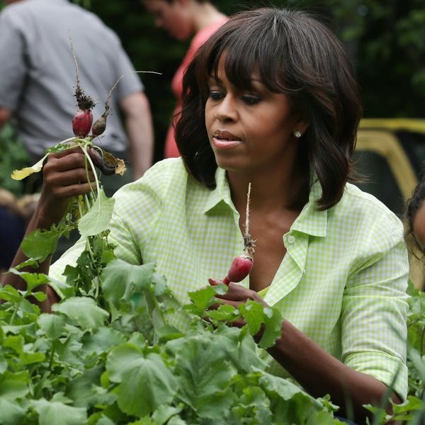 Find Out What Will Happen to Michelle Obama's White House Vegetable Garden