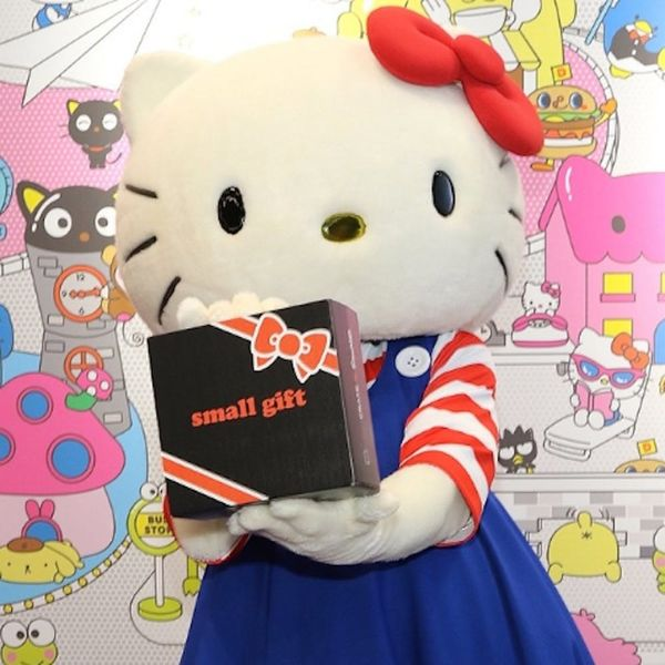 OMG: This Sanrio Subscription Crate Will Officially Be the Cutest Item on Your Christmas List
