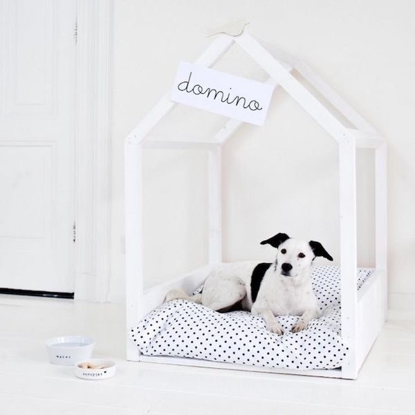 15 DIY Pet Beds That Actually Fit in With Your Decor