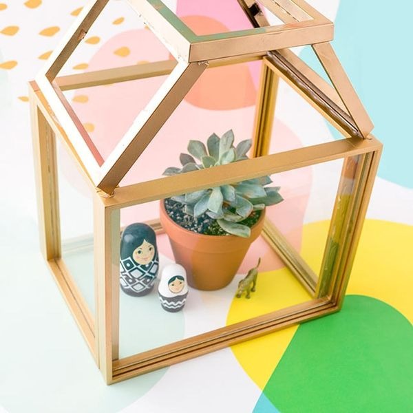 You'll Never Believe What We Used to Build This Terrarium