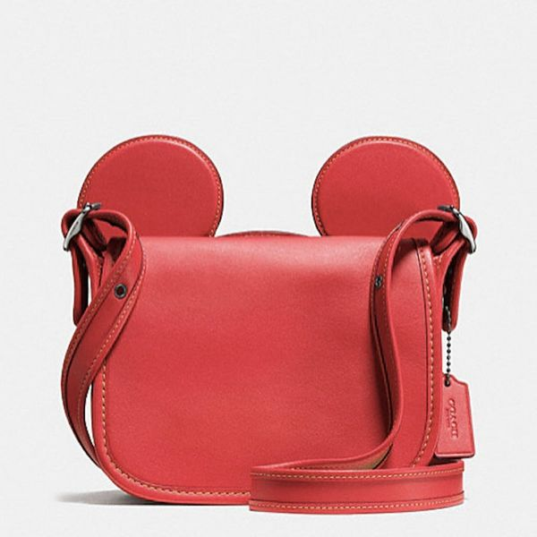 OMG: Coach Just Dropped ANOTHER Disney Collab at Half the Price of the Original