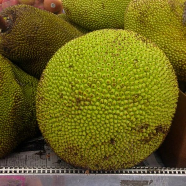 How to Prepare and Cook Jackfruit, the Latest Vegan Food Trend