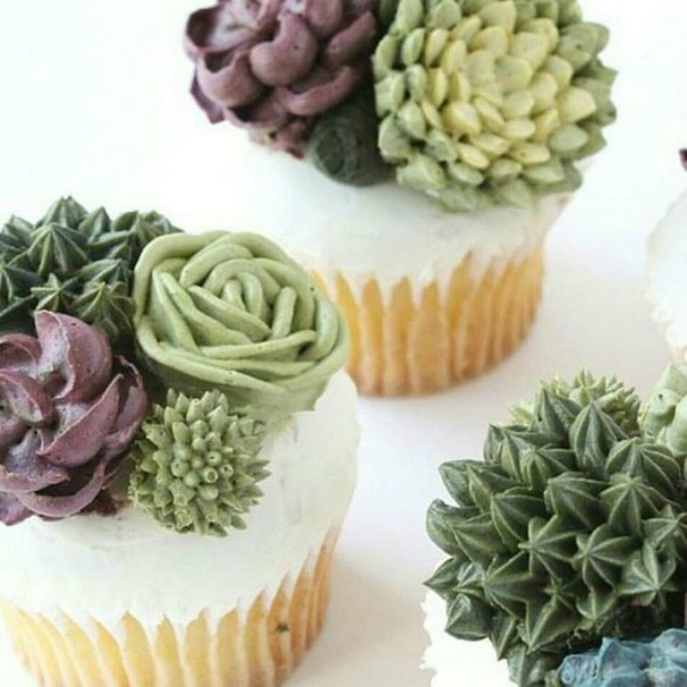12 Succulent Cakes On Instagram That Are So Lifelike You Won T Believe Your Eyes Brit Co