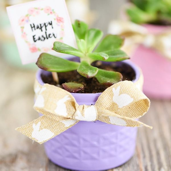 24 Easter Basket Ideas for Every Bunny on Your List