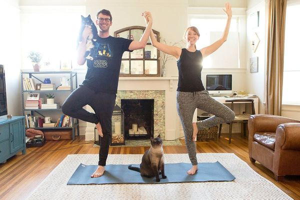 The Only Workout Routine You (and Your Cats) Need in 2016