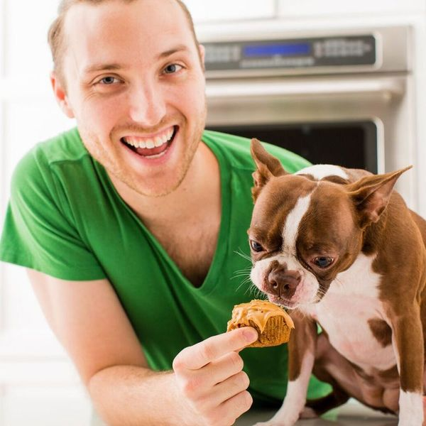 How to Make Peanut Butter Carrot Pupcakes for Your Dog (and Yourself!)