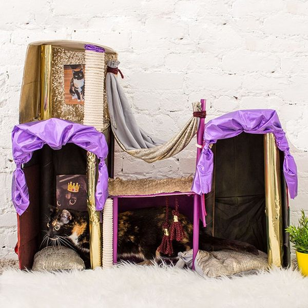 Create the Cat Palace of Your Kitty's Dreams
