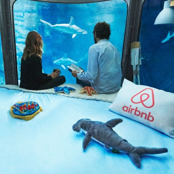 Here's How to Get a Free Stay in a Shark Hotel