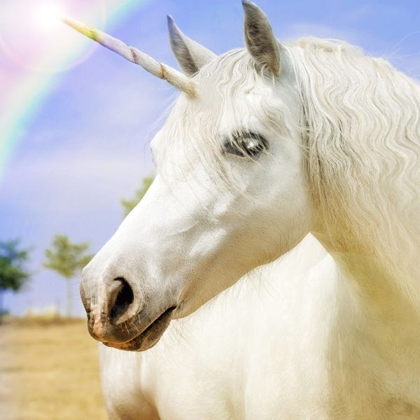 Unicorns Are Real, According to Science