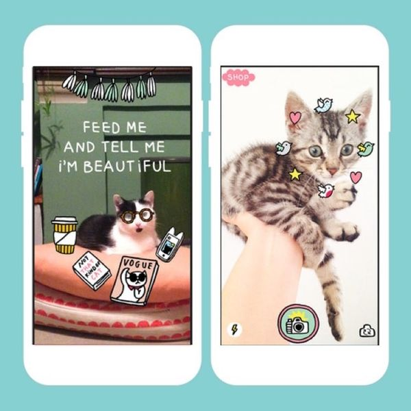 5 Best Apps of the Week: An App to Help You Talk to Your Cat and More!