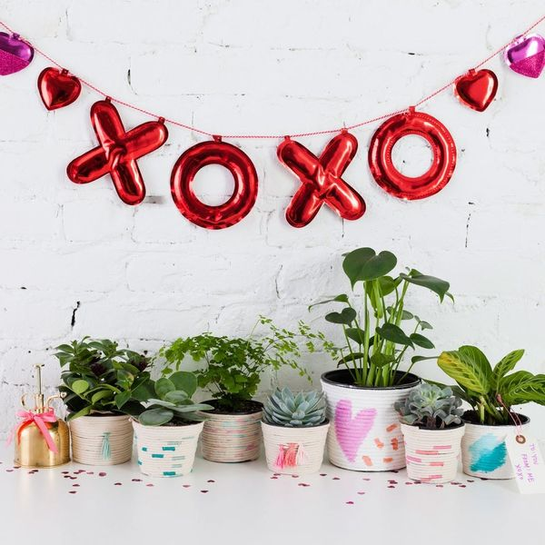 Mix These DIY Techniques to Make the Cutest Living Valentine's Day Gift