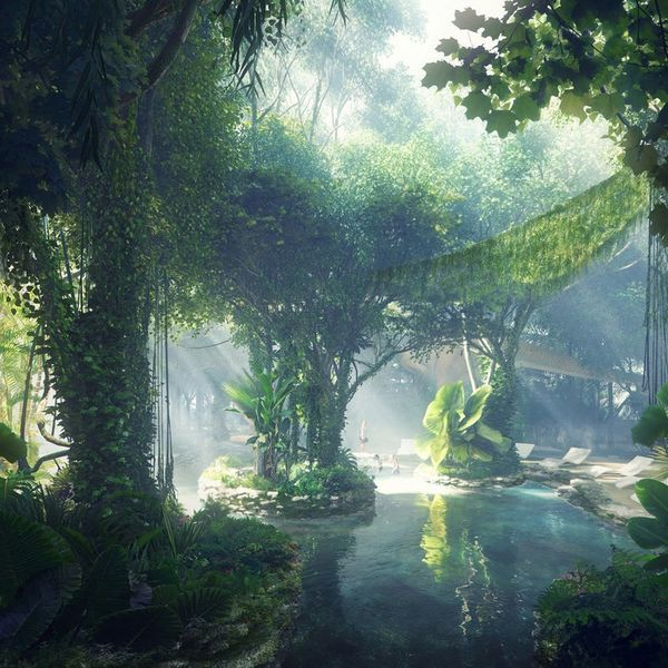 This Epic Hotel Has an ACTUAL Rainforest Inside