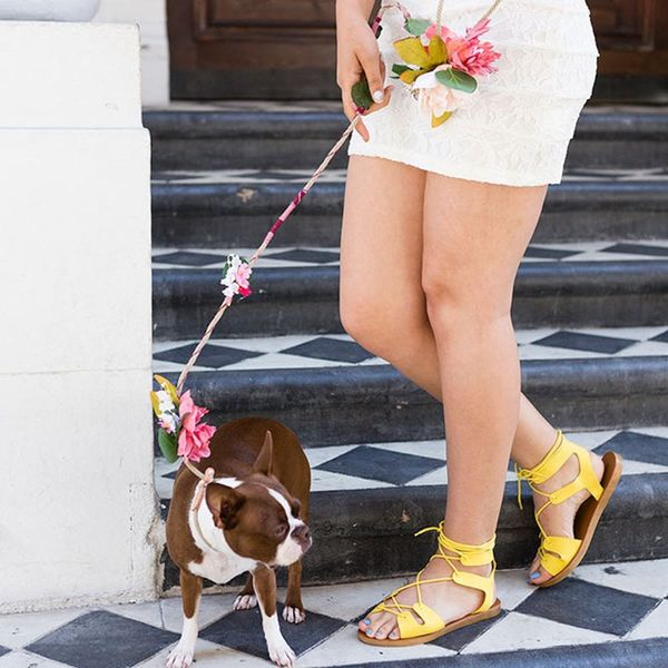 Make Your Pooch Feel Like a Star With a Flower Crown-Inspired Leash