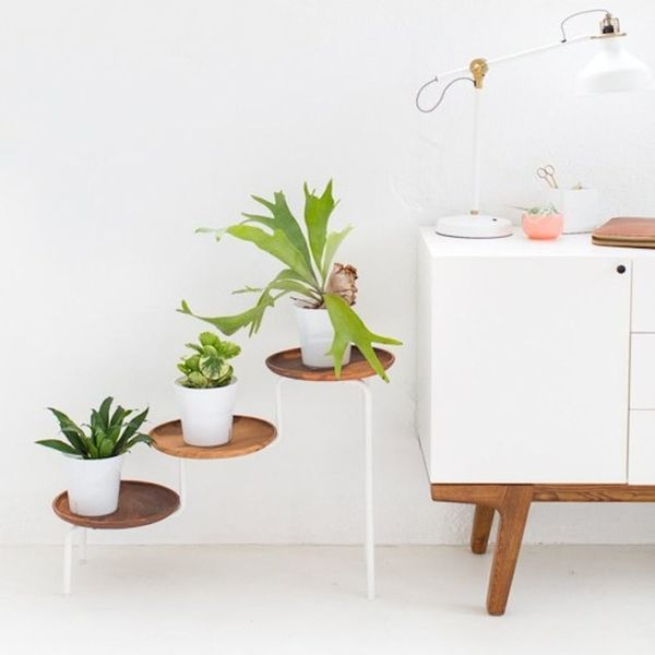 17 Modern + Minimalist DIY Plant Stands That'll Transform Your Space