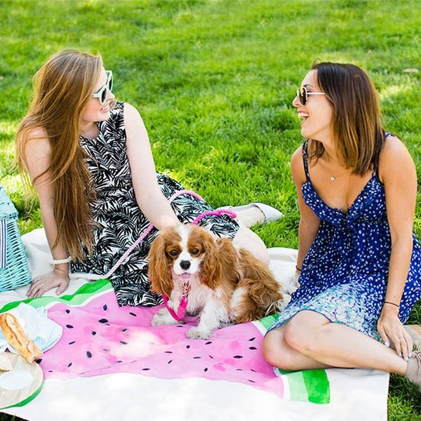 16 30th Birthday Ideas for the Perfect Picnic Party