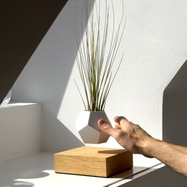 These Magnetized Planters Levitate in the Air
