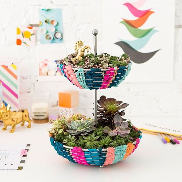 Turn This Kitchen Accessory into a Small Space Indoor Garden