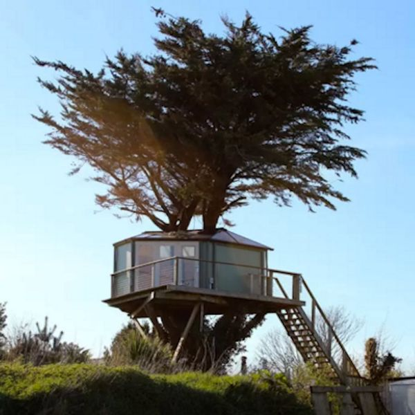 9 Amazing Treehouse Airbnbs You Need to Book Now