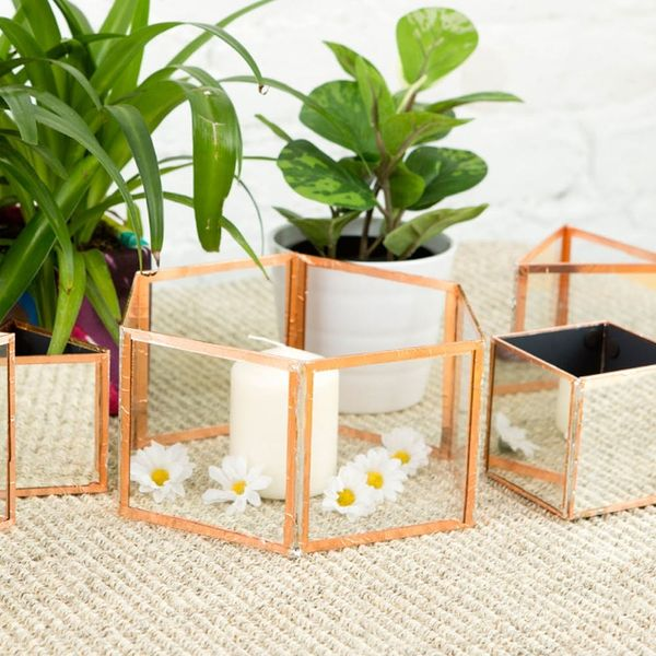 Never Buy a Terrarium Again After Tackling This DIY
