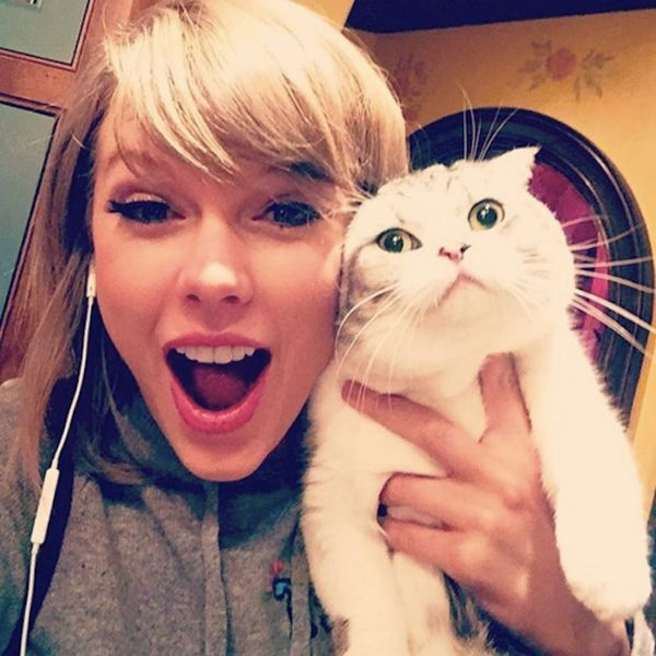 Morning Buzz! Taylor Swift's Cat at a Party Is All of Us + More