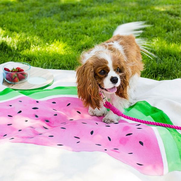14 Blankets to Help You Picnic like a Pro