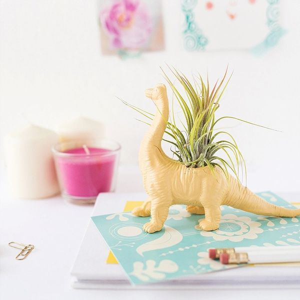 Liven Up Your Workspace With This DIY Dino Planter