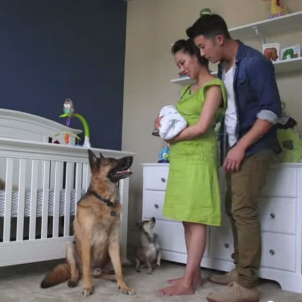 This Sweet Pregnancy Time Lapse Is like Nothing You've Seen Before