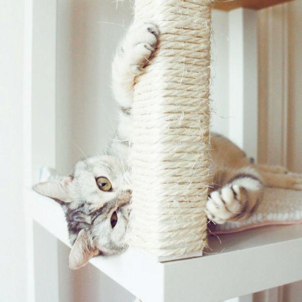 21 IKEA Hacks Your Pets Will Appreciate