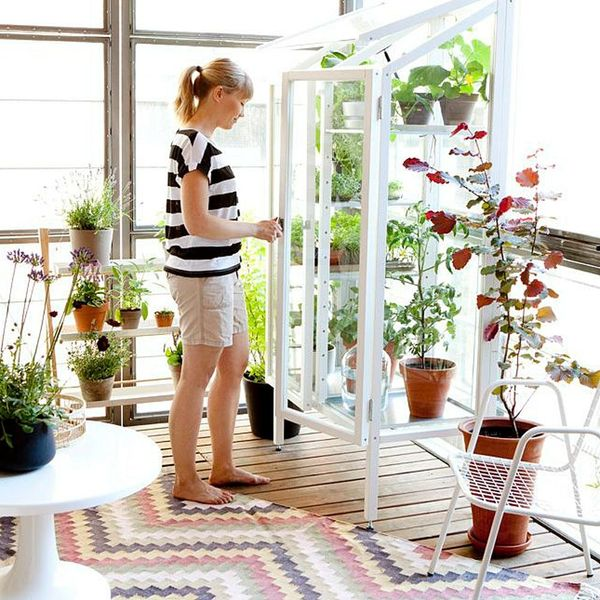 12 Dream Greenhouses to Make You Green With Envy