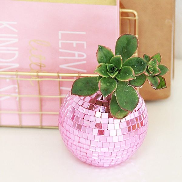 What to Make This Weekend: Disco Ball Planters, a Kimmy Schmidt Tote + More