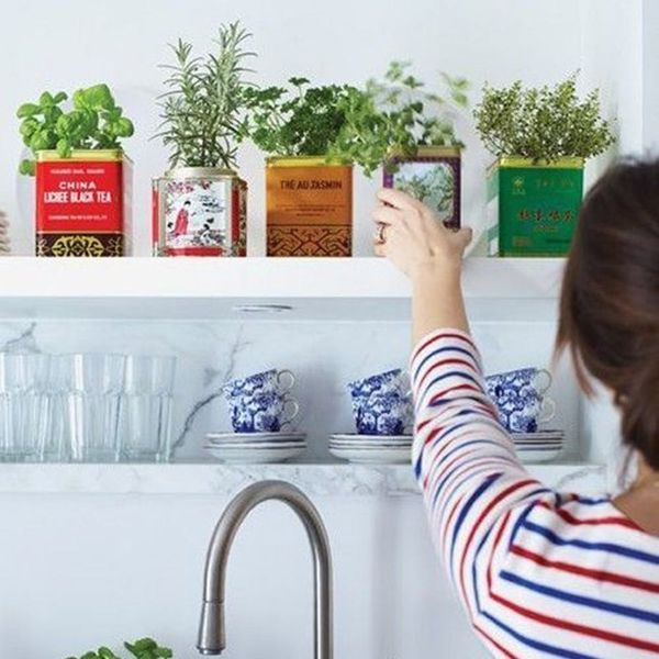 12 Indoor Gardening Hacks for Spring, No Yard Required