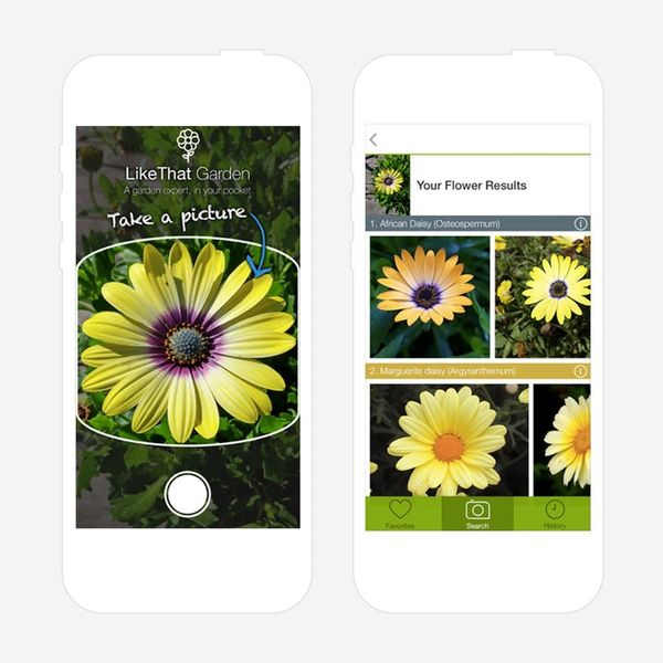 9 Gardening Gadgets + Apps to Save Your Plants
