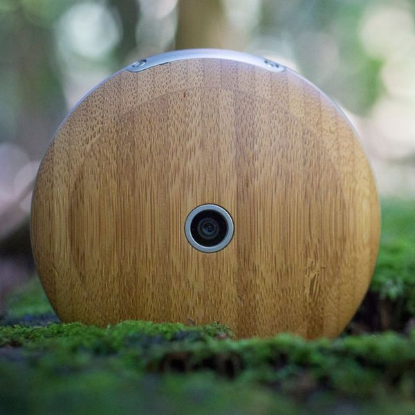 This Wooden Gadget Is the Anti-Smartphone
