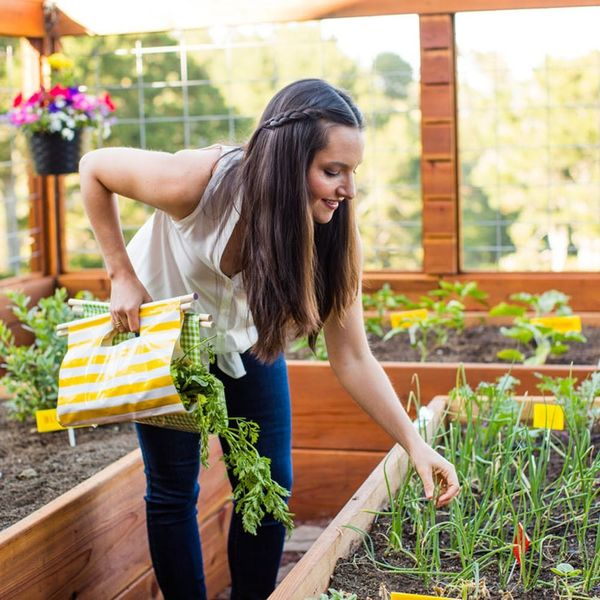 Here's What to Plant in Your Garden This Spring