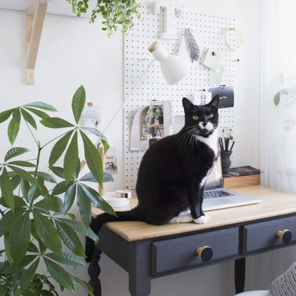 See How This Designer Transformed Her Messy Desk into a Productive Workspace