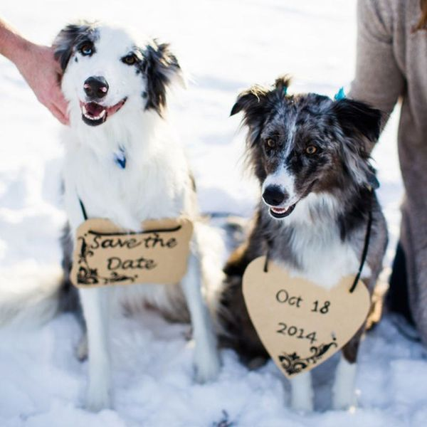 13 Winter Engagement Photo Ideas to Warm Your Heart